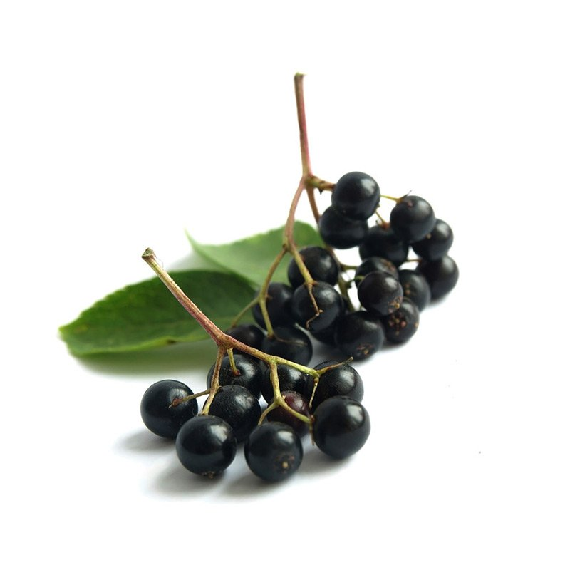 Elderberries – Greenhook Ginsmiths